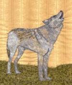 2101-01-wolf1_th.jpg