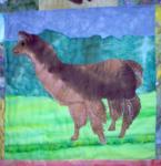 llamas-4_th.jpg